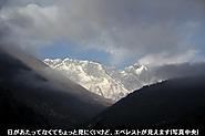 2011_11_18_2376