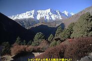 2011_11_19_1652