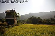 2011_11_23_2113