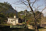 2011_11_23_2134