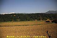 2011_11_24_0452