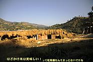 2011_11_24_0489