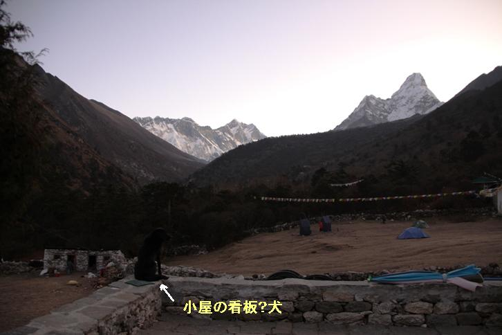 2011_11_19_1636